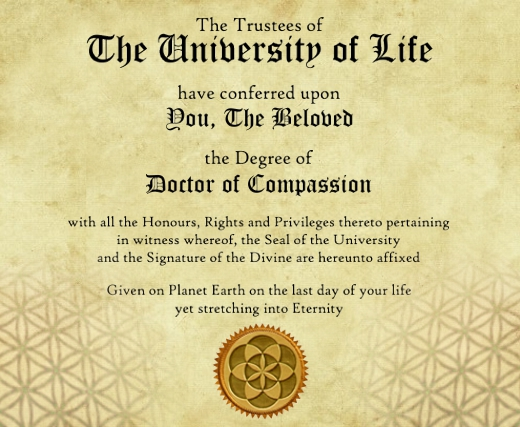 littlewoo-PhD of Compassion